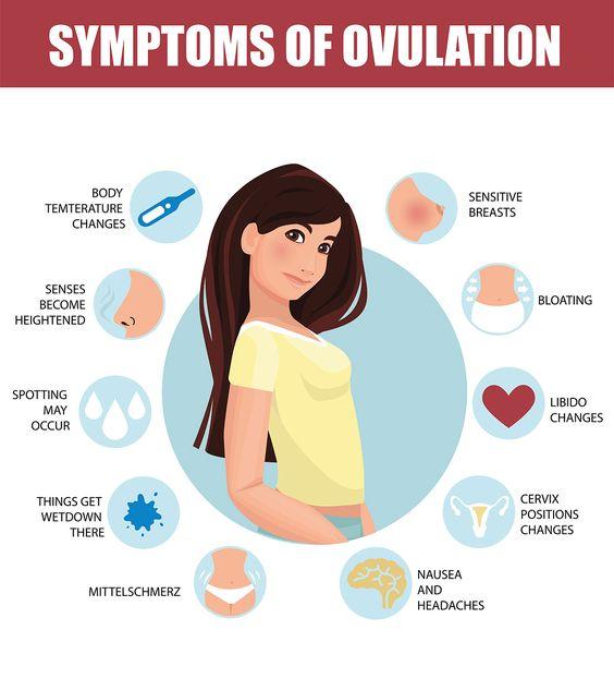 Symptoms Of Ovulation