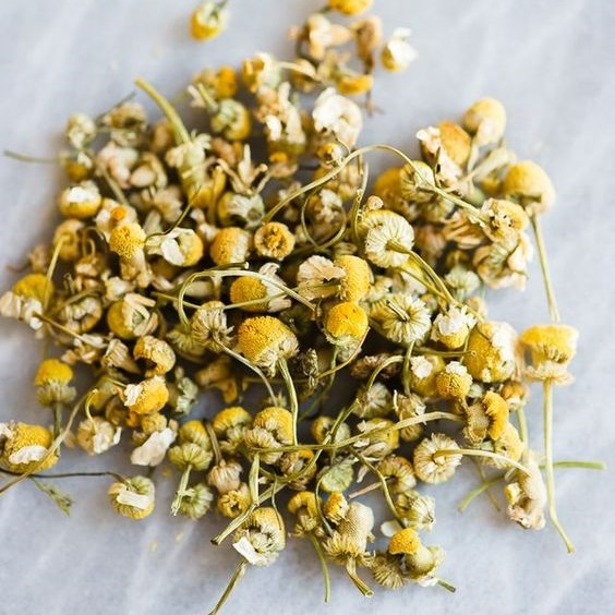 Chamomile Tea For Itchy Vagina