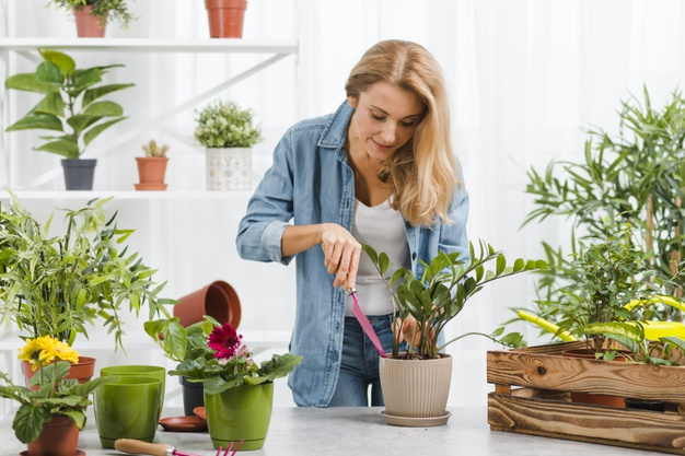 Home Remedies To Increase Oxygen Level